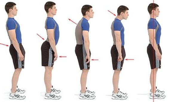 """Il posturologo clinico è un terapista """"posturo consapevole"""", un professionista sanitario che si occupa della nostra postura, dei disturbi dell'apparato muscolo-scheletrico e i dolori ad essi correlati causati appunto da squilibri posturali."""